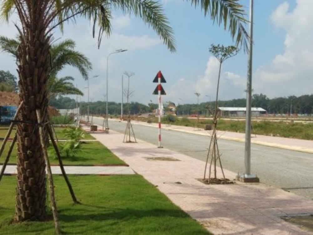 Đường nội khu dự án khu đô thị Phương Toàn Phát đã láng nhựa
